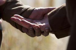 The Walking Dead (Živí mrtví) snubní prsten Maggie (set)